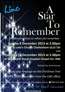 Star2RememberPoster2013